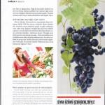 Pegasus Magazine-25.12.2013-74 (10)